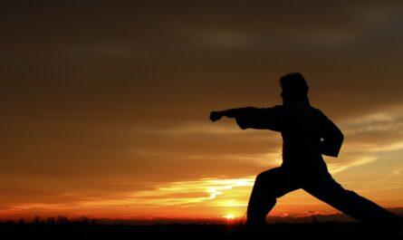 Muž cvičí bojové sporty, konkrétně Kung-Fu.